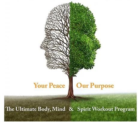 Mindology Fitness Basics V1