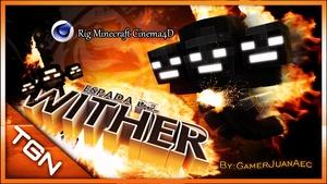 Rig Minecraft