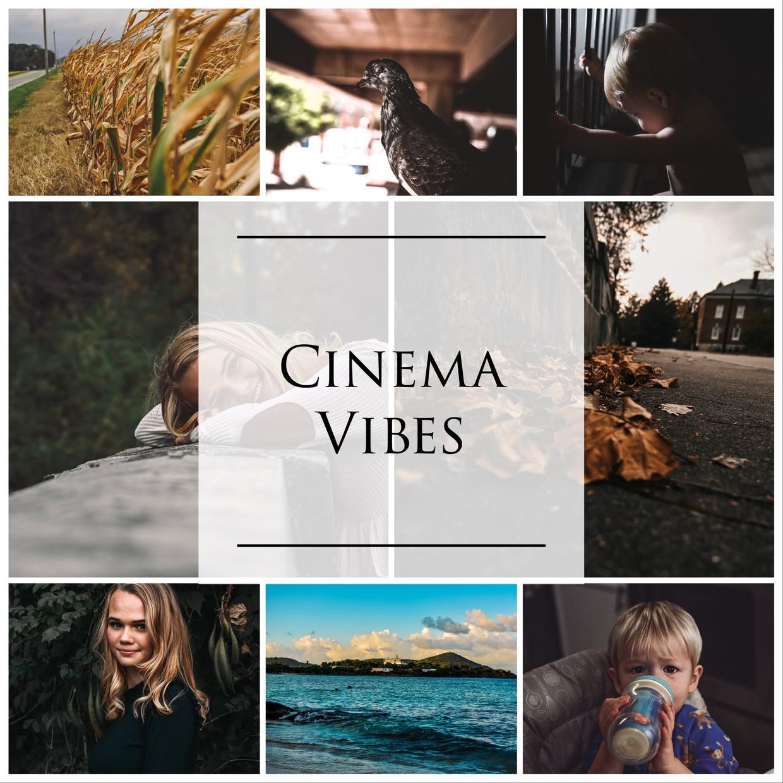 Cinema Vibes Pack (6 LR Mobile Presets)