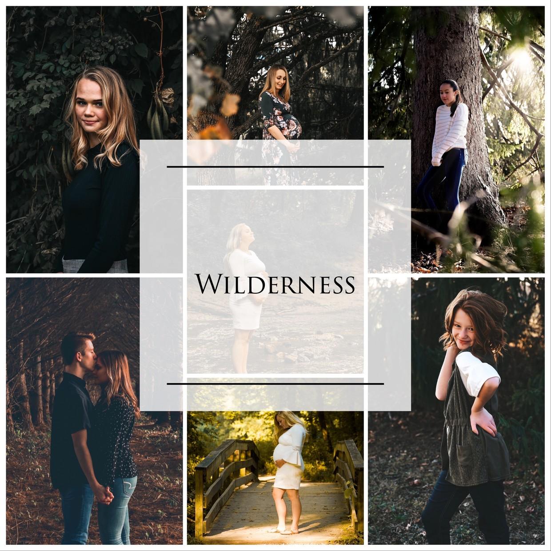 Wilderness Pack (3 LR Mobile Presets)