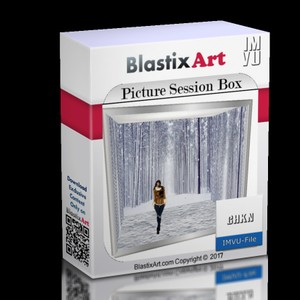 Picture Session Box mesh