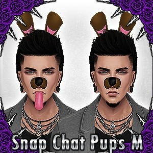Snap Chat Pup Male