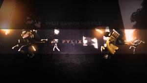 Pylix Banner .PSD File