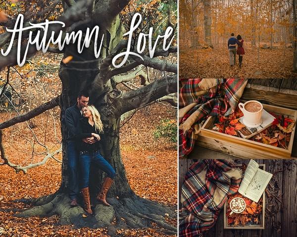 Autumn Love Desktop Edition | Lightroom Preset Collection
