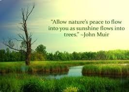 I Choose Peace - Meditative Music