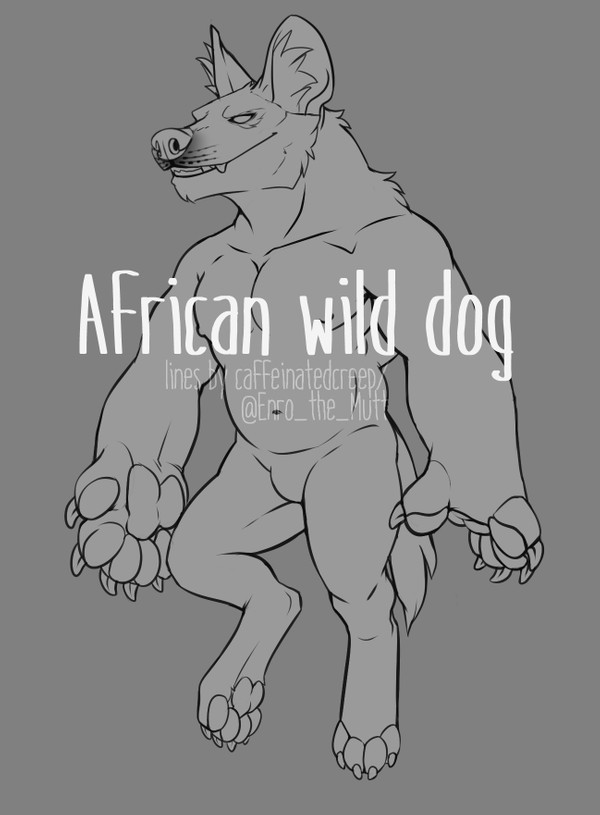 African Wild Dog base
