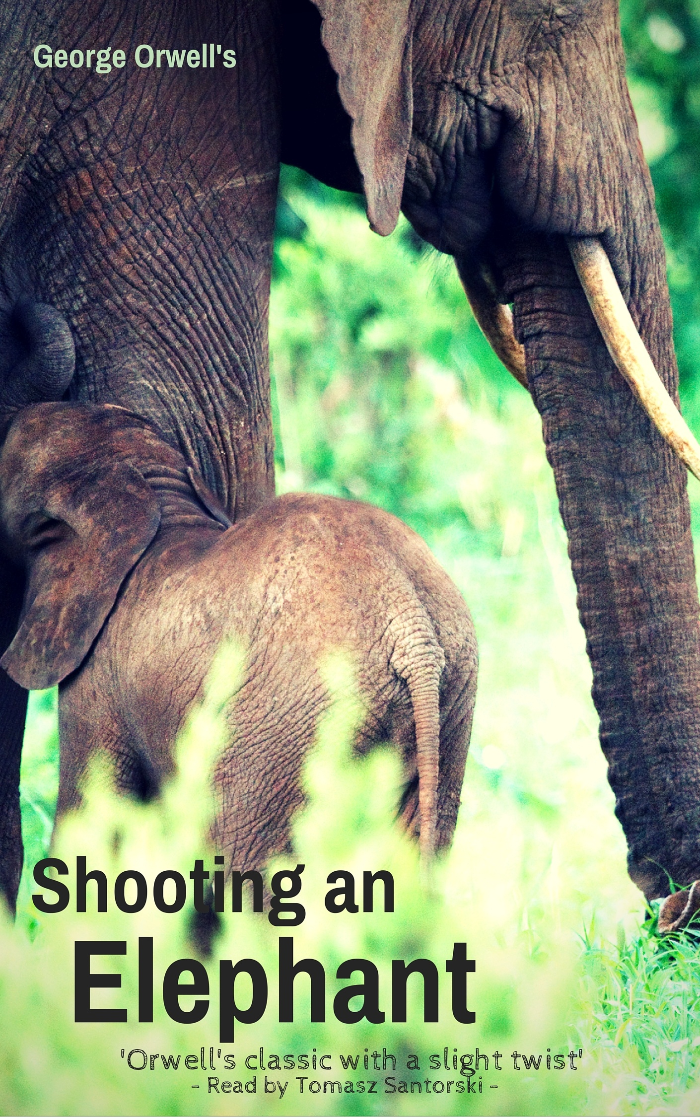 shooting an elephant peer pressure I believe the essay shooting an elephant by george orwell was intended to point out how peer pressure can impact a person's decision and to make the audience question how they would react had they been in that situation.