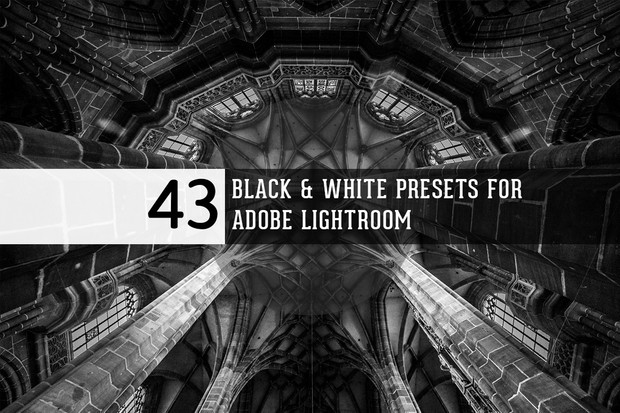 Black & White presets for Adobe Lightroom