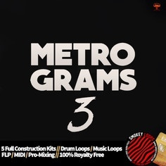 METRO GRAMS VOL 3 SOUNDS INSPIRED BY METRO BOOMIN