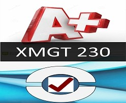 XMGT 230 Week 9 Final Project: Management and Leadership Presentation