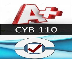 CYB 110 Week 4 Discussion Question: Security for Bring Your Own Device (BYOD) and Network