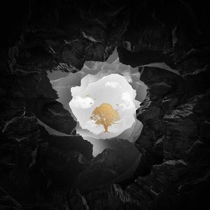 Sandro Cavazza - So Much Better (Avicii Remix) [Fl Studio Remake]