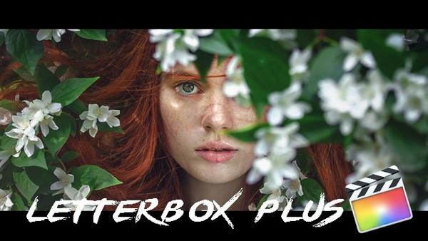 Letter Box Plus