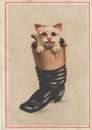 Cuentos de siempre: El gato con botas