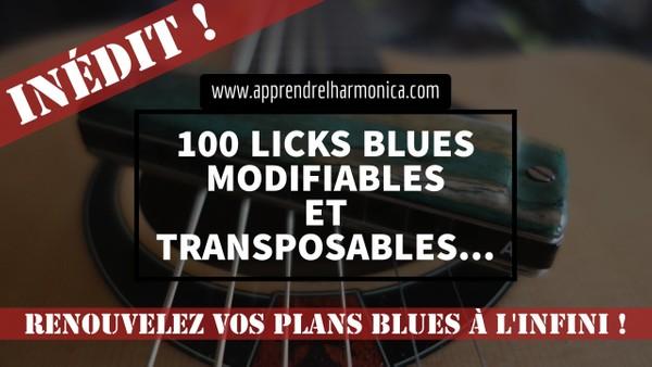 100 Licks blues modifiables et transposables - 2016