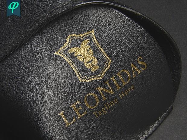 Leonidas - Lion Logo Template