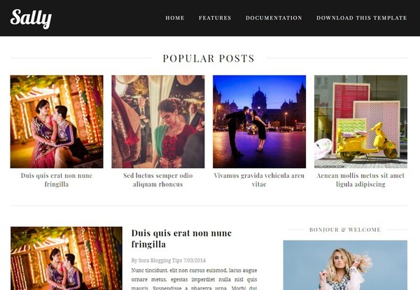 Sally Blogger Template Extended Version