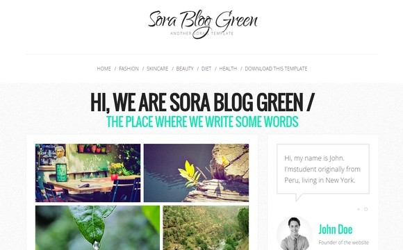 Sora Blog Green Blogger Template Premium Version