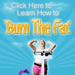 Burn The Fat eBook