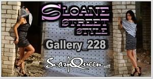 Gallery 228