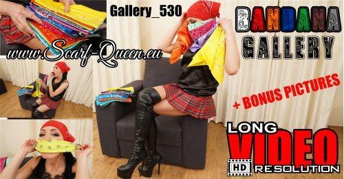 Gallery 530