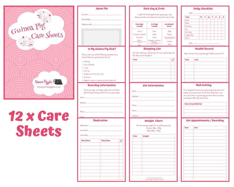 Guinea Pig Care Sheets - Pink Design B - INSTANT DOWNLOAD