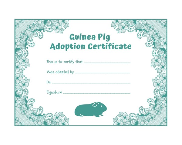 Guinea Pig Adoption Certificate - INSTANT DOWNLOAD