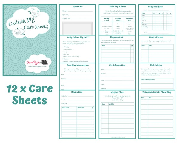 Guinea Pig Care Sheets - INSTANT DOWNLOAD