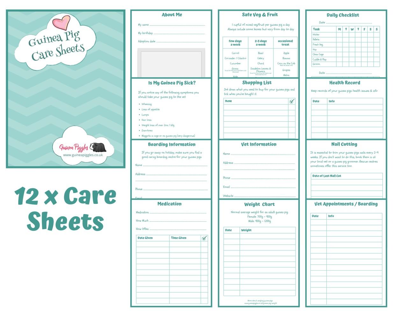 Guinea Pig Care Sheets - Blue Design A - INSTANT DOWNLOAD
