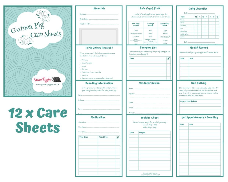Guinea Pig Care Sheets - Blue Design B - INSTANT DOWNLOAD