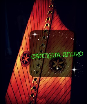 55-CANTIGUA ANDRO LEVER HARP PACK