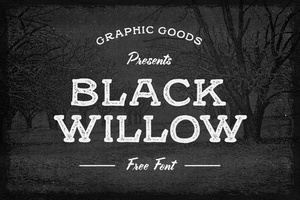 Black Willow Free Font