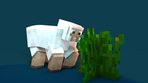 Sheep rig