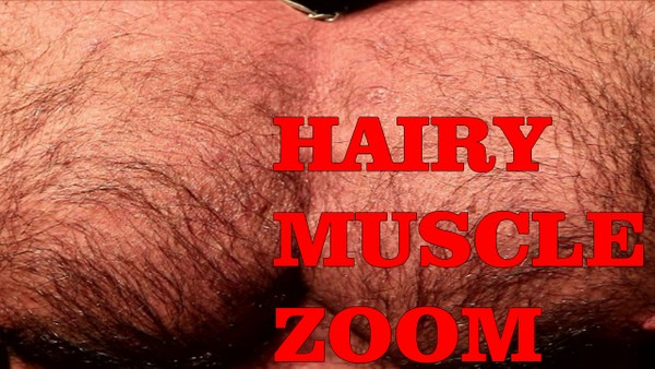 Hairy muscle ZOOM