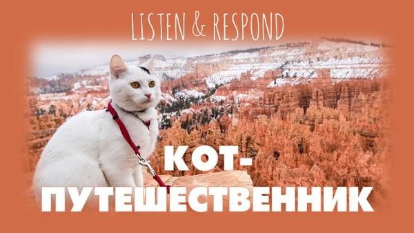 Listen & Respond: Кот Путешественник
