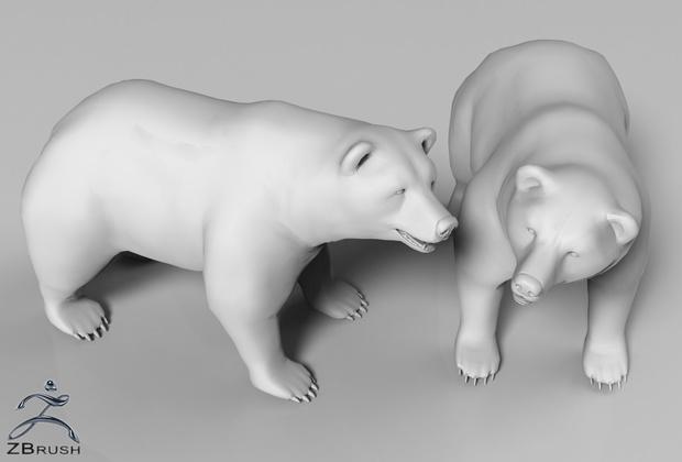 3D Polar Bear Interior Model
