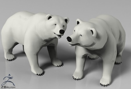 3D Polar Bear Interior Model