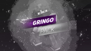 THE GRINGO PACK, a minecraft gfx pack