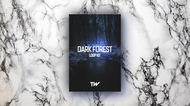 DARK FOREST - (LOOP KIT)