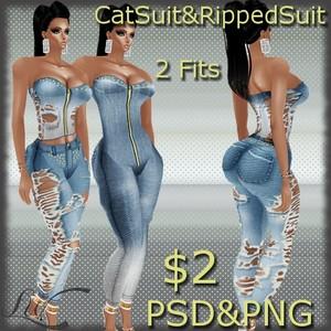 CatSuit-2 Fits