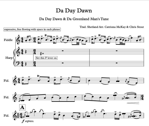 Da Day Dawn/Greenland Man's Tune arr. Stout/McKay Harp & Fiddle DUO