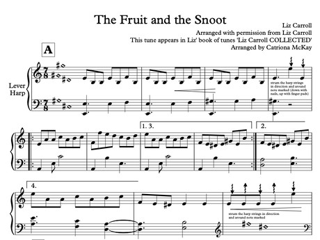 The Fruit and the Snoot - Liz Carroll, arr. C McKay HARP SOLO