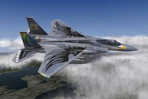 F-15 eagle Su-33