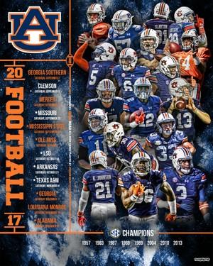 2017 Auburn Football Poster (16x20)