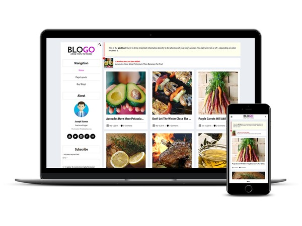 Blogo Weebly Blog Theme