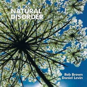 MW844 Natural disorder - Rob Brown / Daniel Levin