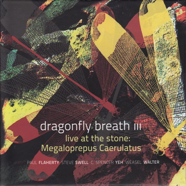 MW944  Dragonfly Breath III - Live at the Stone: Megaloprepus Caerulatus