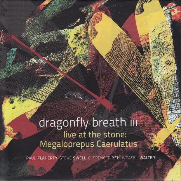 MW944  Dragonfly Breath III - Live at the Stone: Megaloprepus Caerulatus