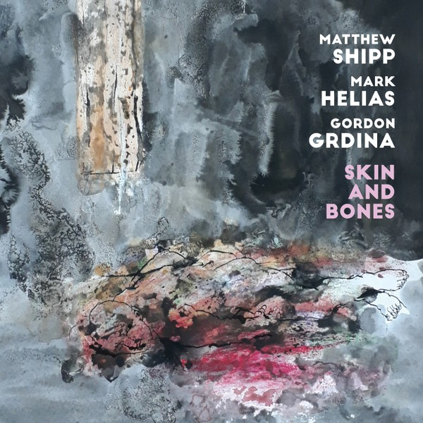 MW987 Matthew Shipp / Mark Helias / Gordon Grdina - Skin and Bones