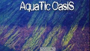 Aquatic Oasis Soundscapes - Water Sound FX - App Assets - Nova Sound